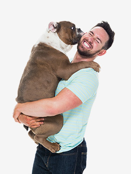 chien embrasse maitre