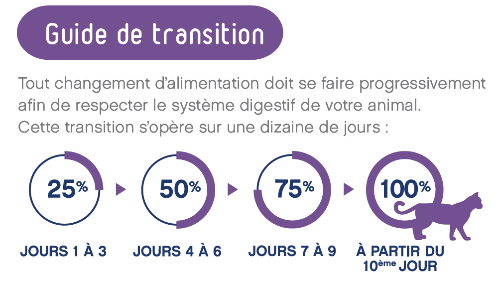 Guide de transition